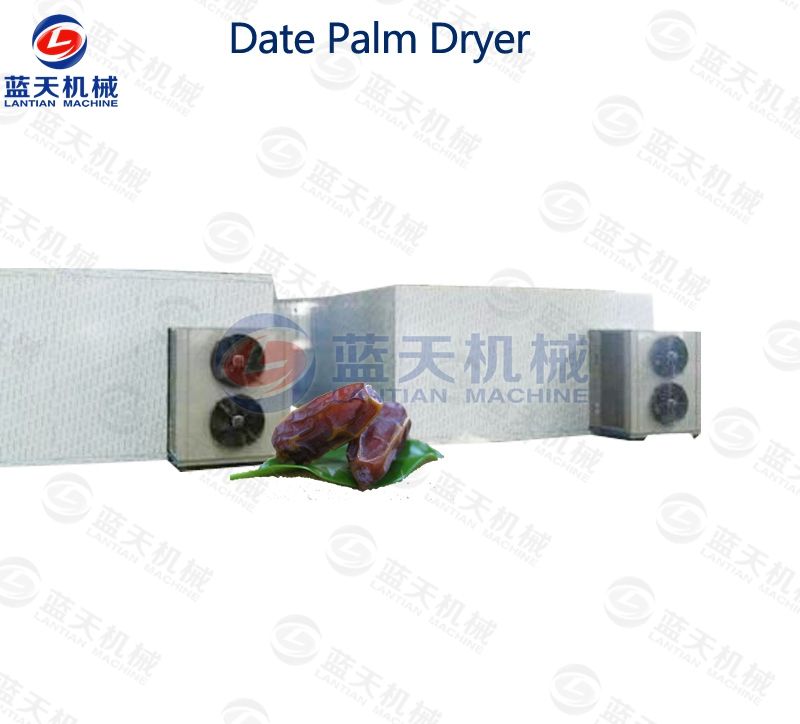 Date Palm Dryer